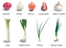 a chive